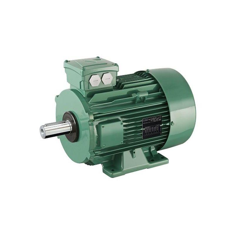 IEC oikosulkumoottorit Leroy-Somer