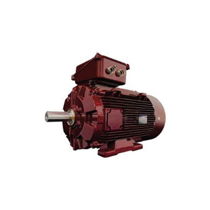 Kestomagneettimoottorit Leroy-Somer